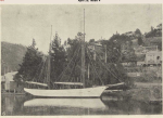 The Dawn in the Tamar River<br /> Photo in the weekly courier 1909 April 29 insert 4 just after she sank. Picture donated by Jacks ship yards, builder of the Dawn.